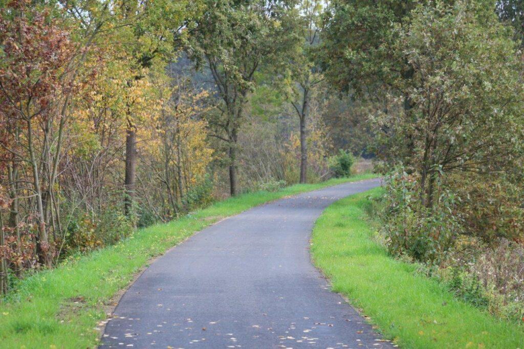 Zakręt w prawo na asfaltowej ścieżce rowerowej otoczonej drzewami.