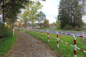Ścieżka rowerowa przecinająca drogę. Po obu stronach barierki. Na ścieżce pierwsze, jesienne liście.