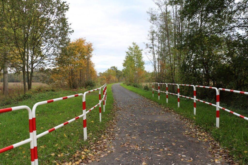 Ścieżka rowerowa prowadząca na polanę. Po obu stronach barierki.