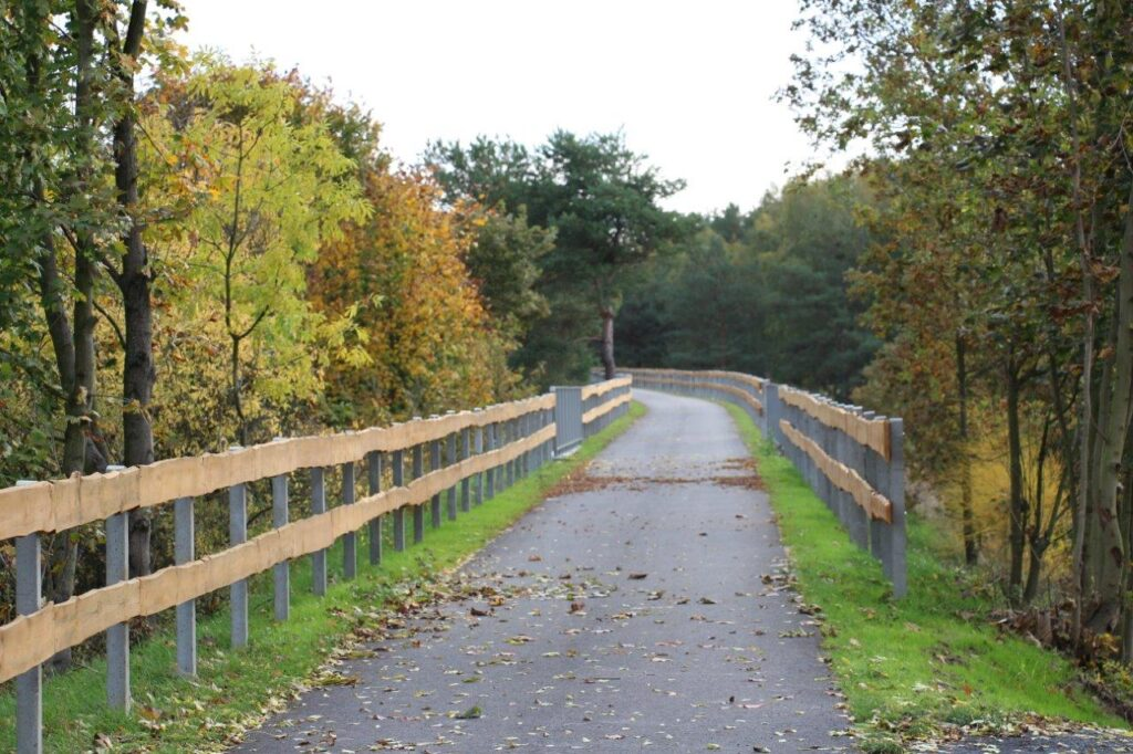 Asfaltowa ścieżka rowerowa biegnąca wzdłuż stalowo-drewnianych barierek. Po obu stronach, na całej długości, widać drzewa.