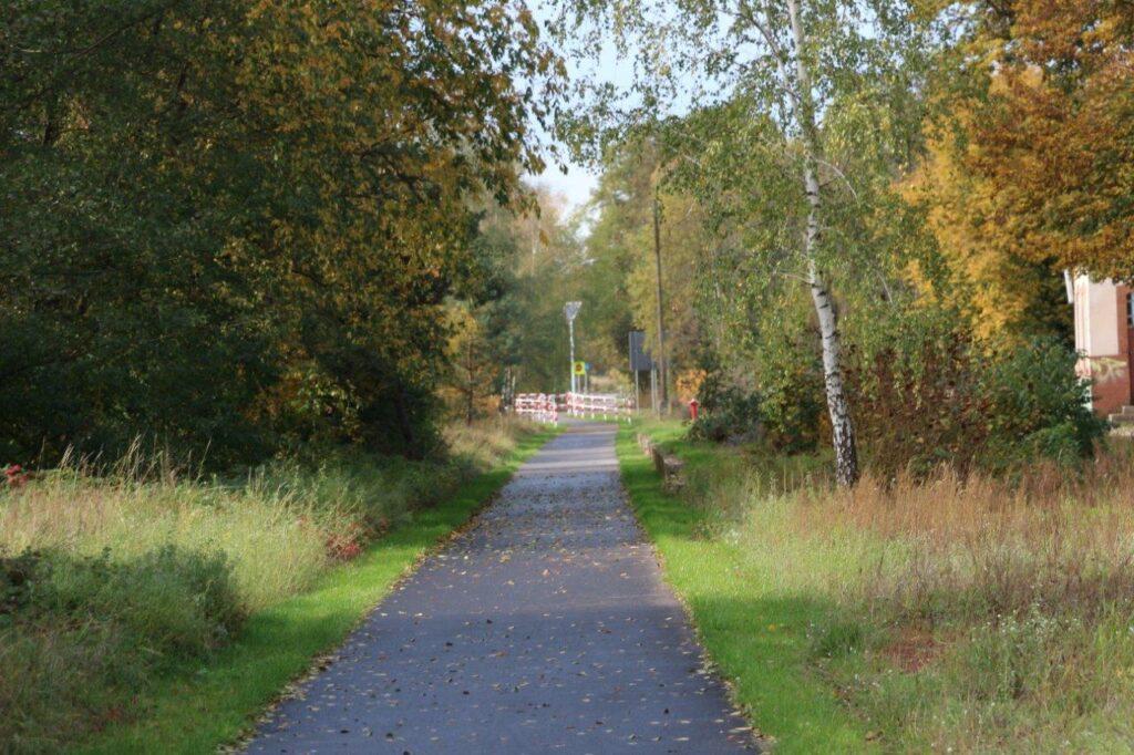 Ścieżka rowerowa. Po obu stronach jesienne drzewa. W oddali widać lampę i barierki.