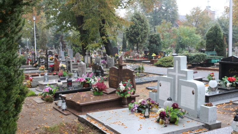 Na zdjęciu cmentarz komunalny przy ulicy Wandy w Nowej Soli. Widok na nagrobki jesienną porą.