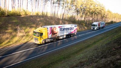 Na drodze są dwie ciężąrówki, mammobusy, jadą jedna za drugą.